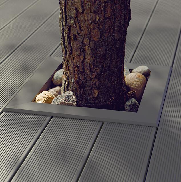 drzewo w tarasie